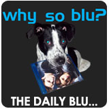 The Daily Blu...September 3, 2009