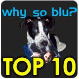 Why So Blu Top 10 List