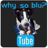 WhySoBluTube