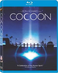 cocoonBD-1
