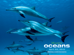 oceans dolphins
