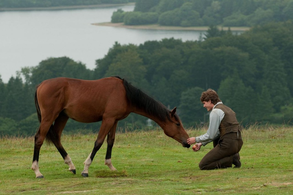 War Horse Blu Ray Review At Why So Blu