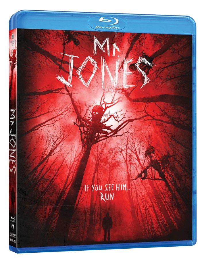 Mr Jones Blu-ray
