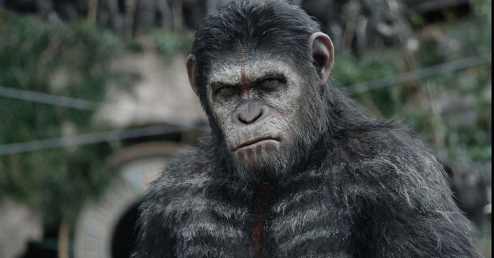 Dawn of the Planet of the Apes 1