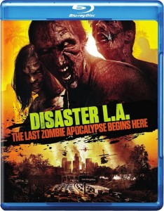 disaster cover big