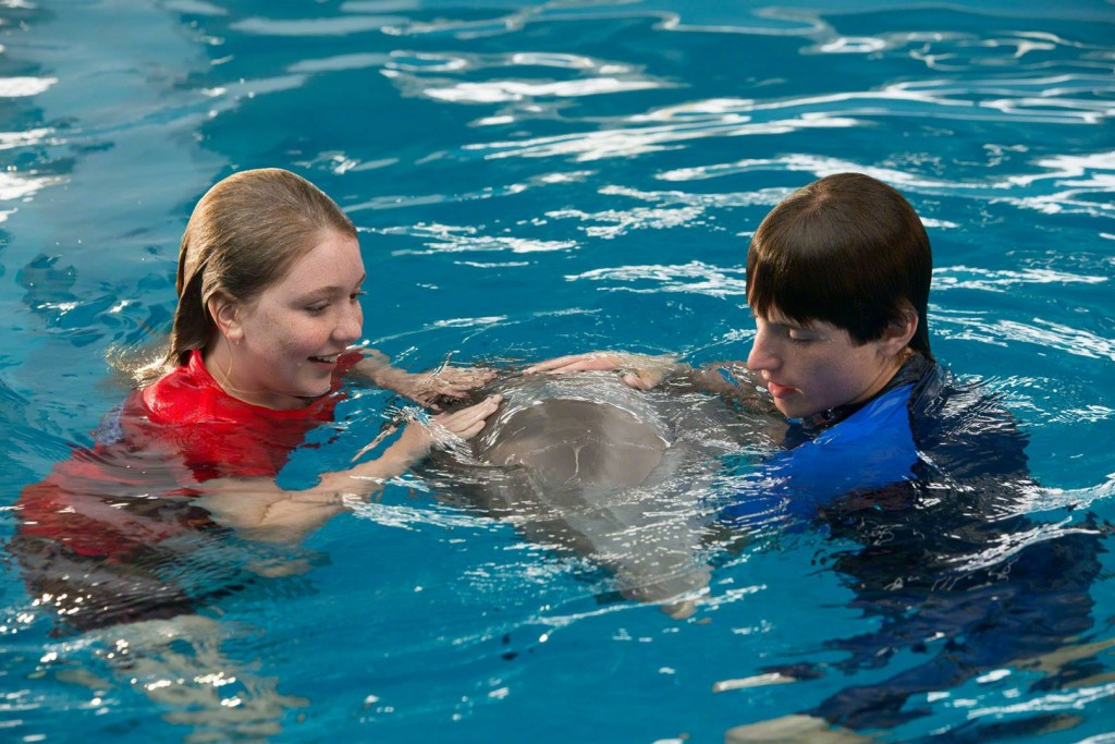 dolphin tale 2 whysoblu 9