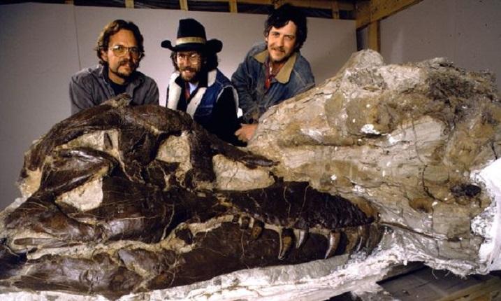 Dinosaur 13 b