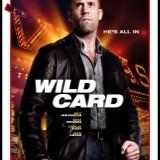 wild card whysoblu poster4
