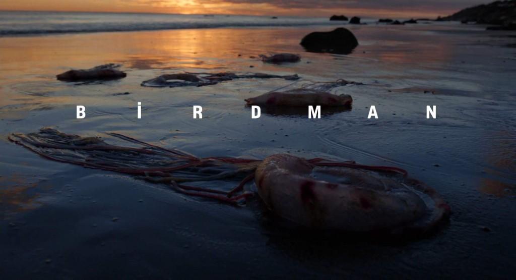 birdman whysoblu 12