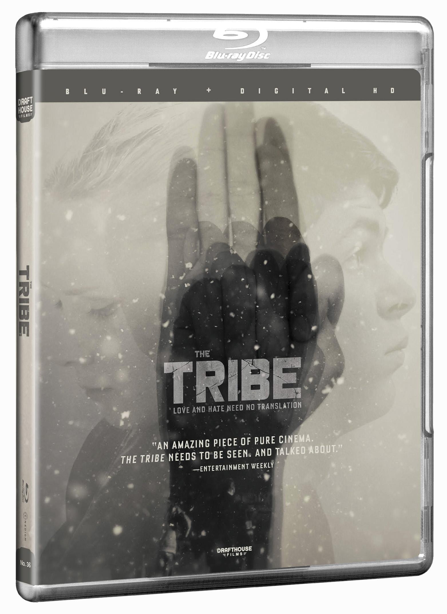 TribeBD-3D