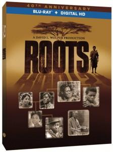 medium Roots 3D Skew 2.25.16 copy