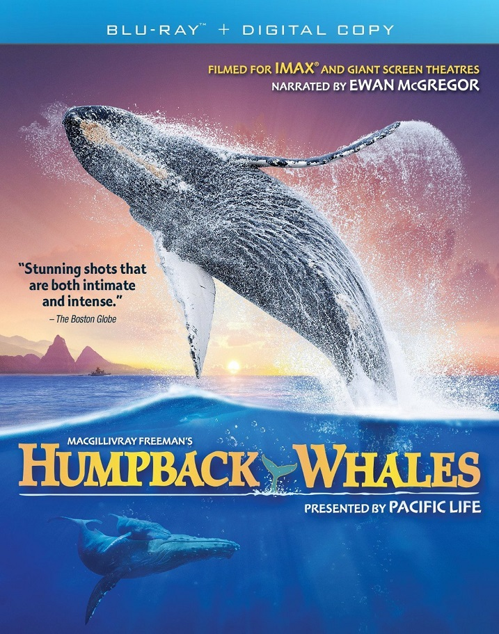Humpback-Whales-Blu-ray