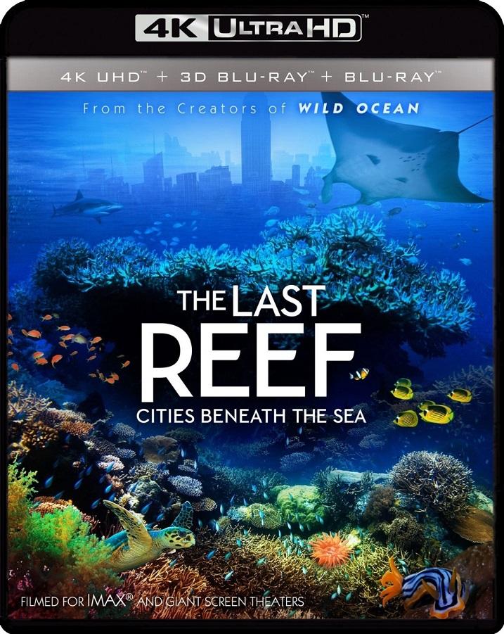 Last Reef-4K-UHD