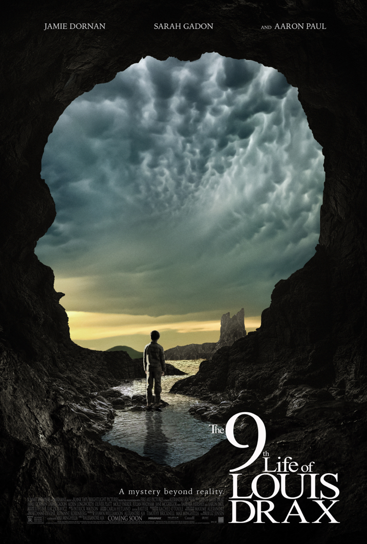 The 9th Life Poster