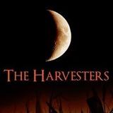 harvesters square
