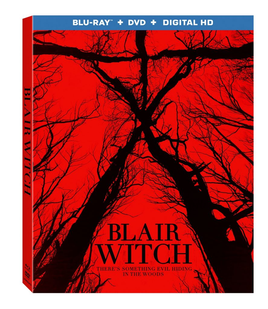 BlairWitch_BD_3DSkew