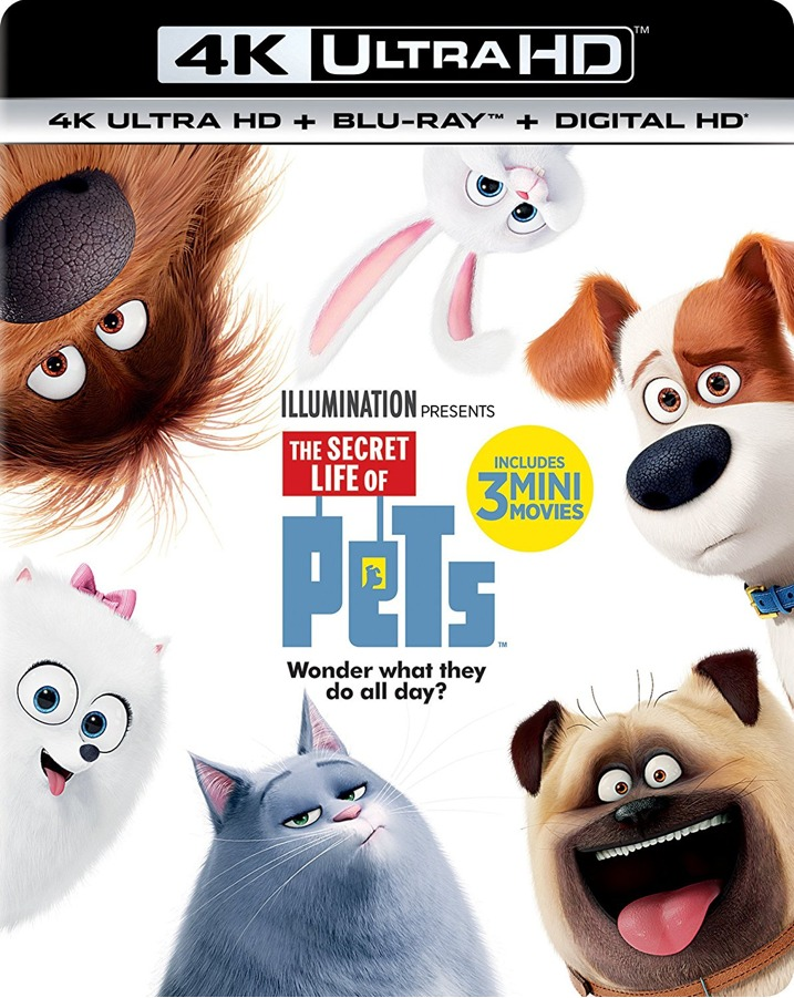 The Secret Life of Pets 4K UHD