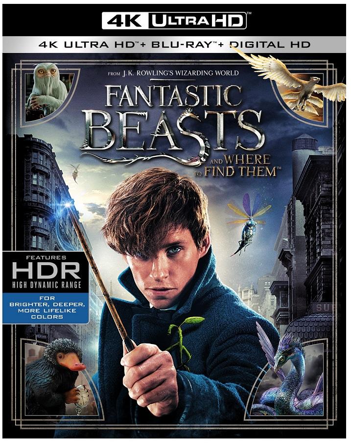 Fantastic-Beasts-4K